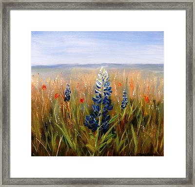 Lonely Bluebonnet Framed Print