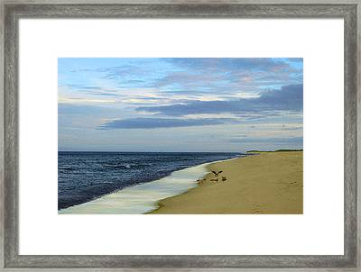 Lonely Cape Cod Beach Framed Print