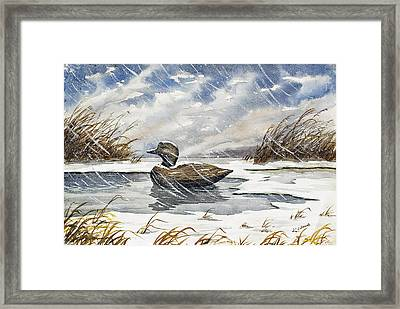 Lonely Decoy In Snow Framed Print