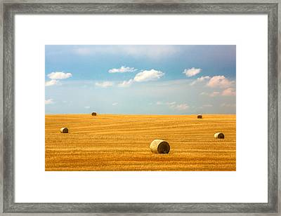 Lonely Fields Framed Print