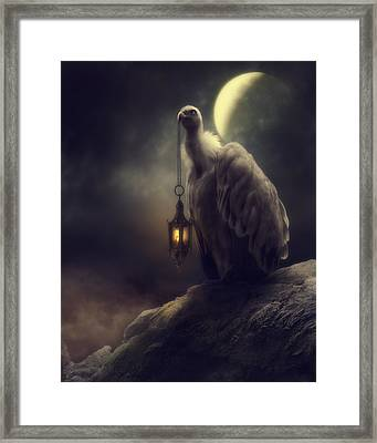 Lonely In The Moonlight Framed Print