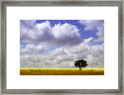 Lonely On The Prairie Framed Print