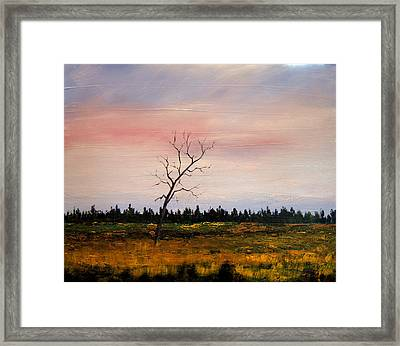 Lonely Place Framed Print by William Renzulli