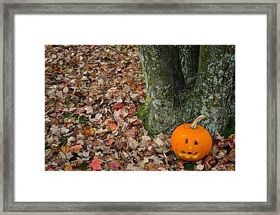 Lonely Pumpkin Framed Print