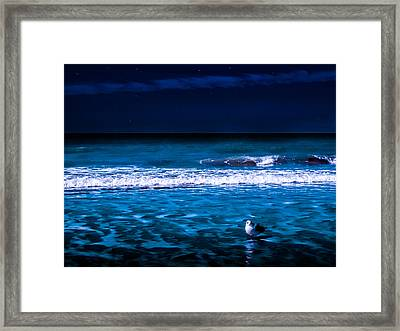 Framed Print featuring the photograph Lonely Seagull by Randy Sylvia