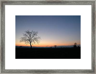 Lonely Tree Framed Print by Guido Strambio