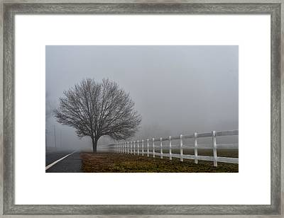 Lonely Tree Framed Print by Louis Dallara