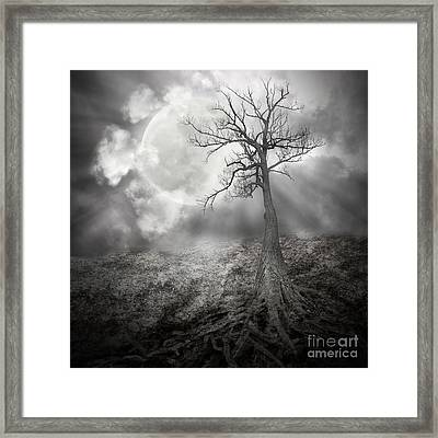Lonely Tree With Roots Holding The Moon Framed Print by Angela Waye