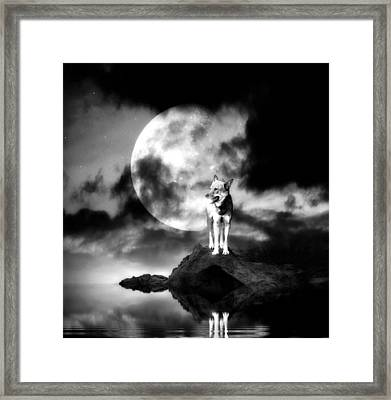 Lonely Wolf With Full Moon Framed Print by Jaroslaw Grudzinski
