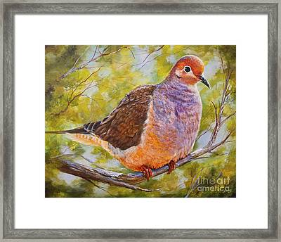 Lonesome Dove Framed Print by AnnaJo Vahle