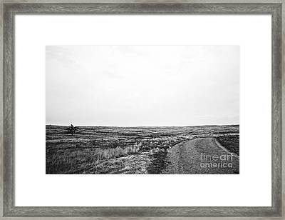 Lonesome Highway No.1 Framed Print by Lennie Green