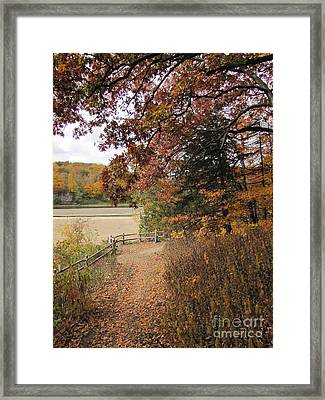 Lonesome Path Framed Print by Minding My  Visions by Adri and Ray