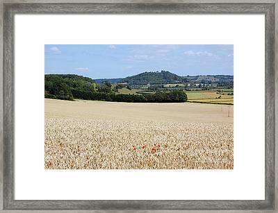 Lonesome Poppies Framed Print