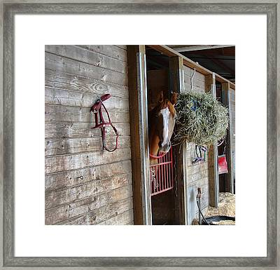 Lonesome Framed Print by Ron Roberts