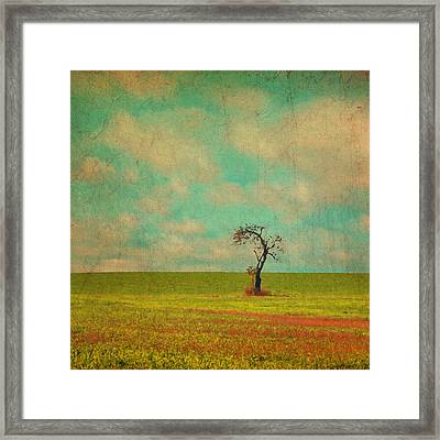 Lonesome Tree In Lime And Orange Field And Aqua Sky Framed Print