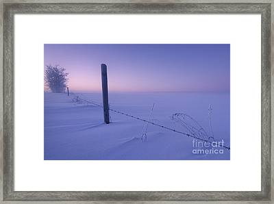 Lonesome Winter Framed Print by Dan Jurak