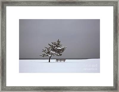 Lonesome Winter Framed Print by Karol Livote