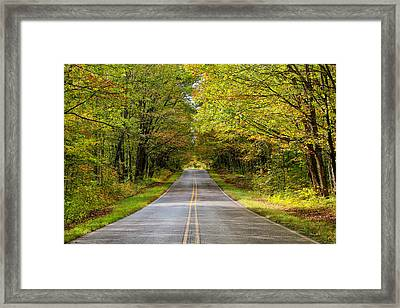 Long And Winding Road   2 Framed Print by Rachel Cohen