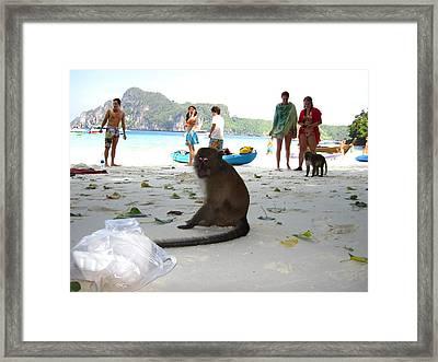 Long Boat Tour - Phi Phi Island - 0113173 Framed Print