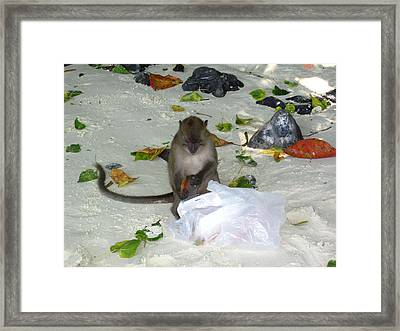 Long Boat Tour - Phi Phi Island - 0113178 Framed Print by DC Photographer
