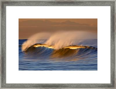 Long Golden Crest  Mg_1721 Framed Print