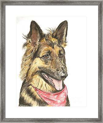 Long Haired German Shepherd In Red Bandana Framed Print