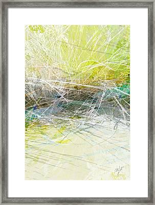 Long Island Beach Grass Framed Print
