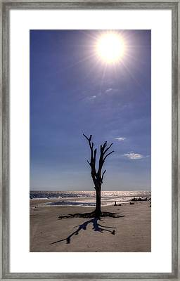 Long Shadow On Jekyll Island Framed Print