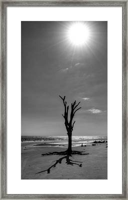 Long Shadow On Jekyll Island In Black And White Framed Print