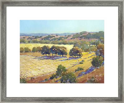 Long Shadows At Los Olivos Framed Print