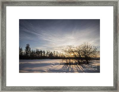 Long Shadows Framed Print by Darcy Shawchek