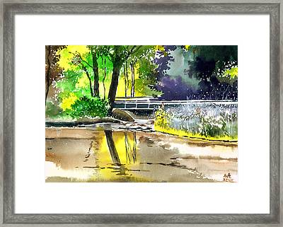 Long Time No See Framed Print by Anil Nene