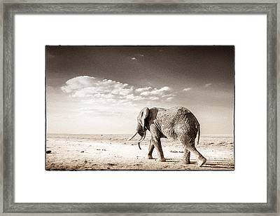 Long Way To Go Framed Print by Mike Gaudaur