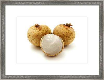 Framed Print featuring the photograph Longan by Fabrizio Troiani