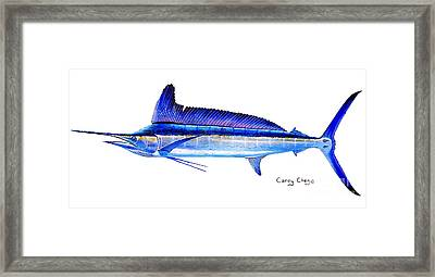 Longbill Spearfish Framed Print by Carey Chen