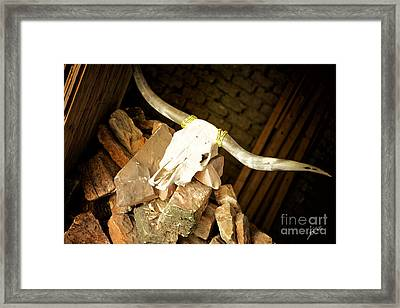 Framed Print featuring the photograph Longhorn by Erika Weber