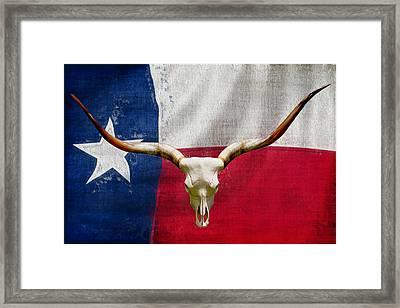 Longhorn Of Texas 2 Framed Print