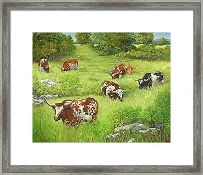 Longhorn Path Framed Print by Cheri Wollenberg