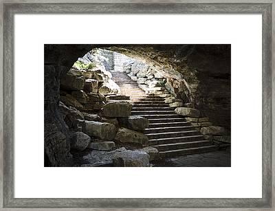 Longhorn Stairs Framed Print