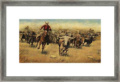 Longhorn Stampede Framed Print by Don  Langeneckert