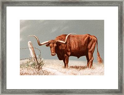 Framed Print featuring the painting Longhorn Steer by DiDi Higginbotham