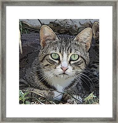 Longing Framed Print by Anita Dale Livaditis
