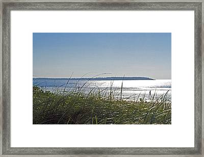 Longing For Summer Framed Print