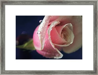 Longing For You Framed Print