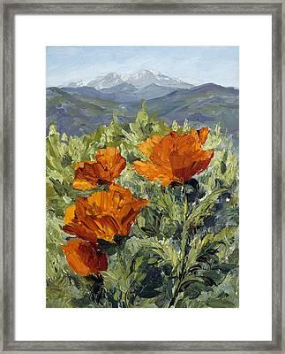 Longs Peak Poppies Framed Print by Mary Giacomini