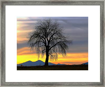 Longs Peak Sunset Framed Print by Rebecca Adams