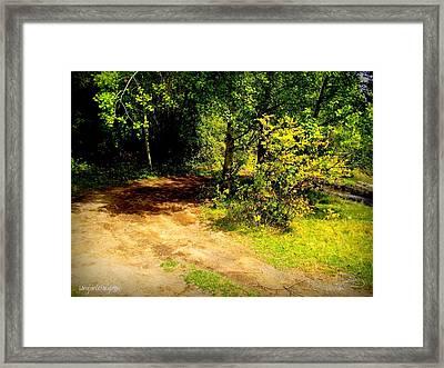 Longsinceforgotton 002 Framed Print by Guy Hoffman