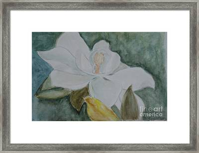 Longue Vue Magnolia 3 Framed Print by Katie Spicuzza