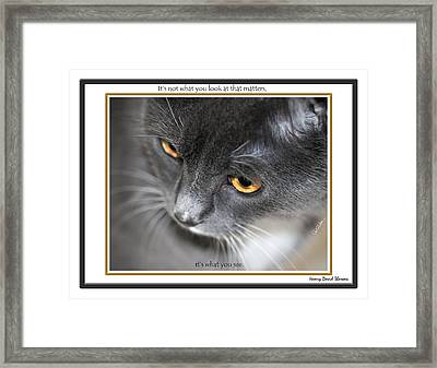 Look And See Framed Print
