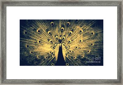 Look At Me Mono Framed Print by Jose Benavides